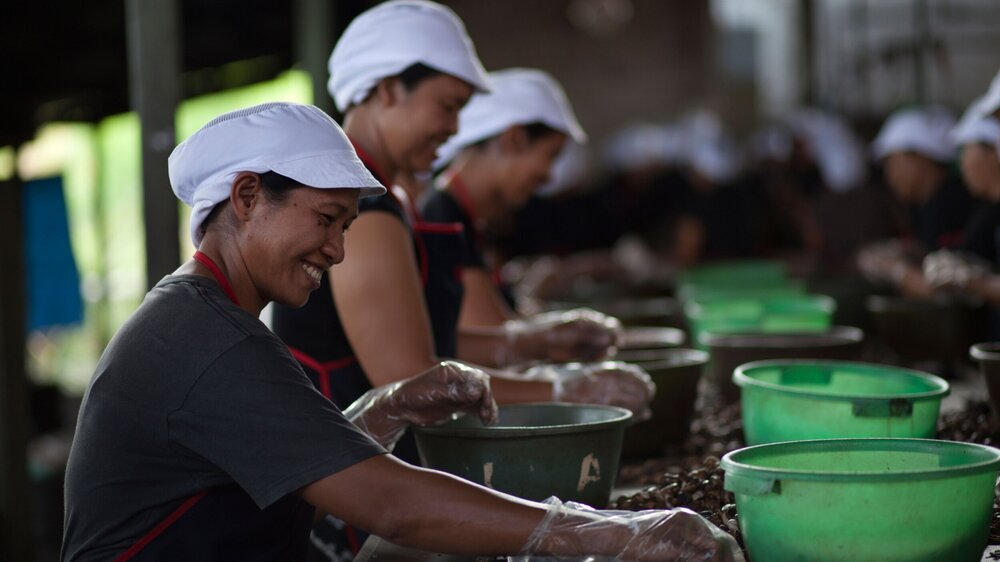 East Bali Cashew hos Kimber Foods